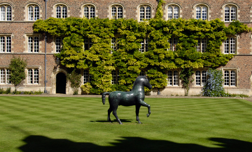 Our beloved chubby horse. Courtesy of Jesus College, Cambridge.
